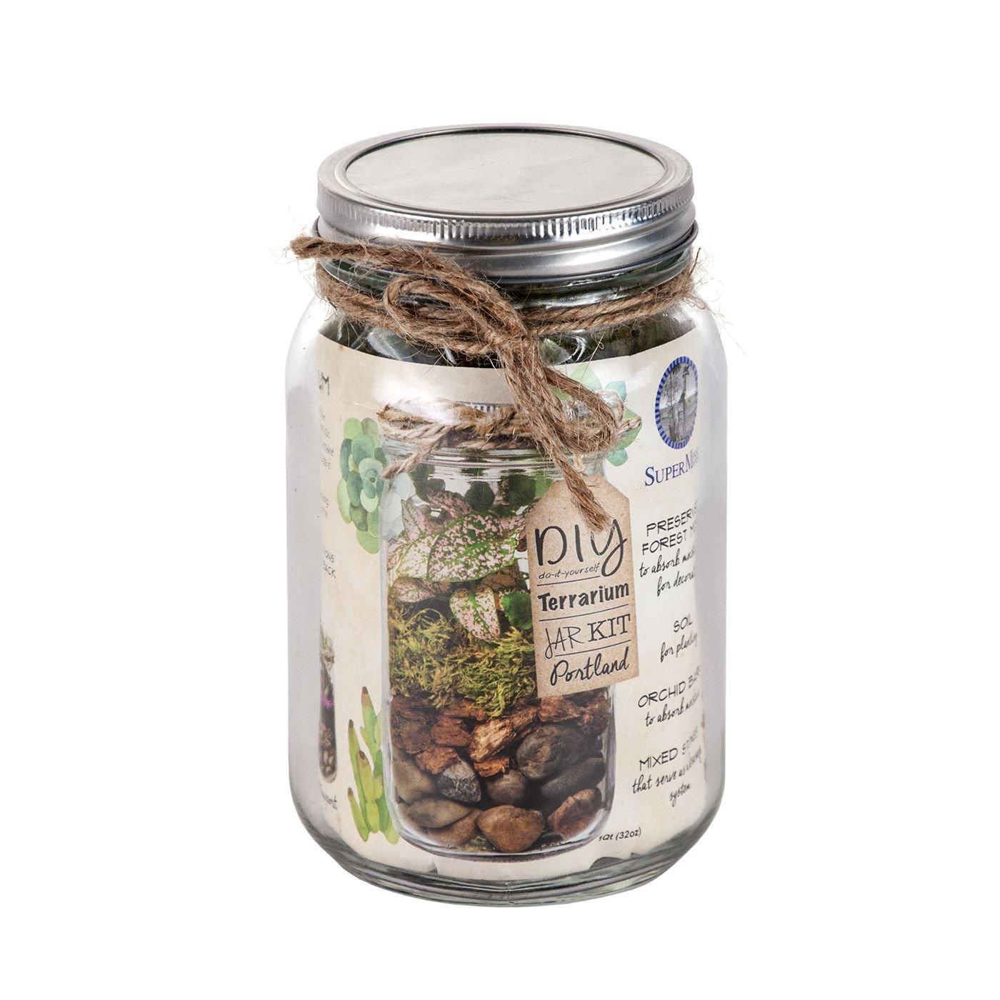Amazon Com Portland Terrarium Kit Diy Mason Jar Terrarium Kit