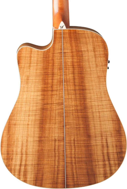 Washburn Woodcraft serie wcsd50sce Dreadnought Guitarra ...