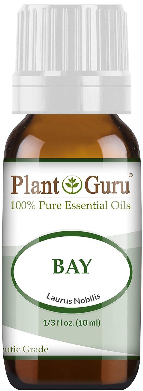 Bay Essential Oil (Laurus nobilis) 10 ml 100% Pure Undiluted Therapeutic Grade.