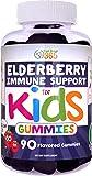 Amazon Com Zarbee S Naturals Children S Elderberry Immune