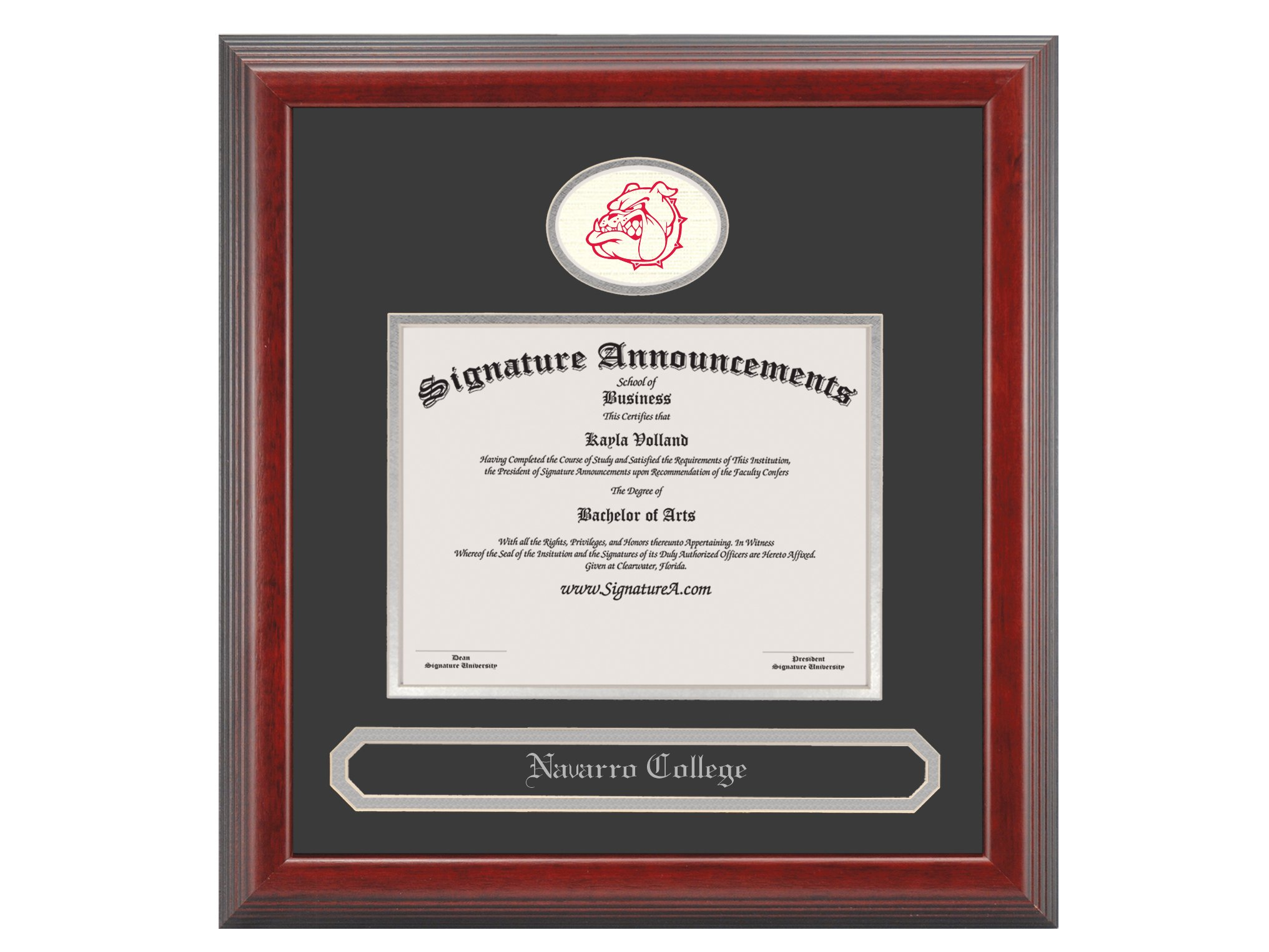 Signature Announcements Navarro-College Undergraduate, Graduate/Professional/Doctor Sculpted Foil Seal & Name Diploma Frame, 16'' x 16'', Cherry
