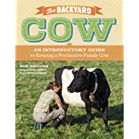 Backyard Cow