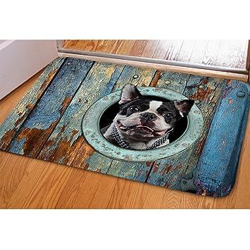 Coloranimal Gracioso 3D Animales Perro Gato Felpudo para Interiores de baño Cocina Alfombrillas Antideslizantes: Amazon.es: Hogar