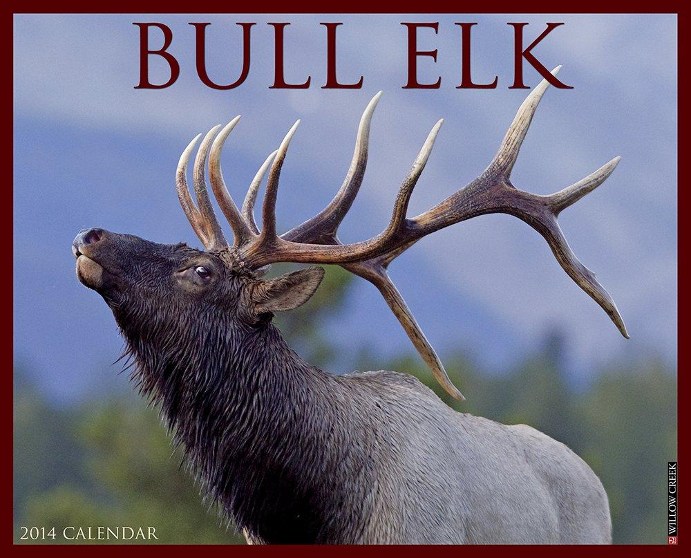 Bull Elk 2014 Wall Calendar pdf epub