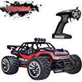 Vatos RC Car Remote Control Car 1:16 Scale 2.4Ghz Racing Truck Off Road Electric High Speed Monster Truck RC Buggy Race Crawler