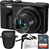 Panasonic Lumix DMC-ZS60 Digital Camera (Black) 16GB Bundle 5PC Accessory Kit Includes SanDisk 16GB SDHC Memory Card (SDSDXN2-016G-G46) + More - International Version (No Warranty)