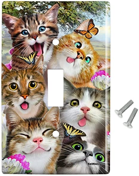 Amazon Com Graphics More Cats And Butterflies Selfie Plastic Wall Decor Toggle Light Switch Plate Cover Furniture Decor