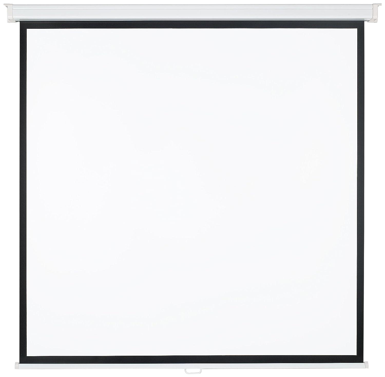 Medium Rollo - Pantalla para proyector (7 kg, Color blanco, Negro ...