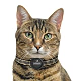 Pawscout Smarter Pet Tag: Cat Version Community Pet