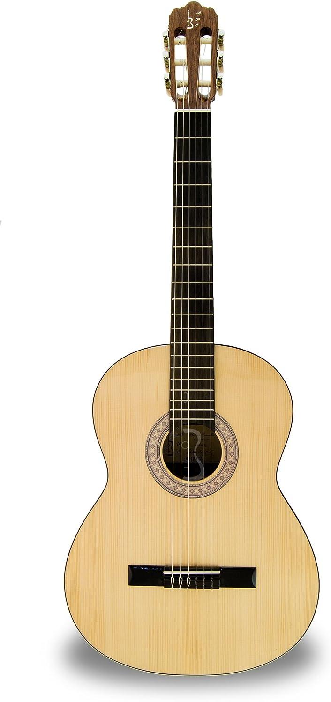 APC Instruments 1S - Instrumento de cuerdas: Amazon.es ...