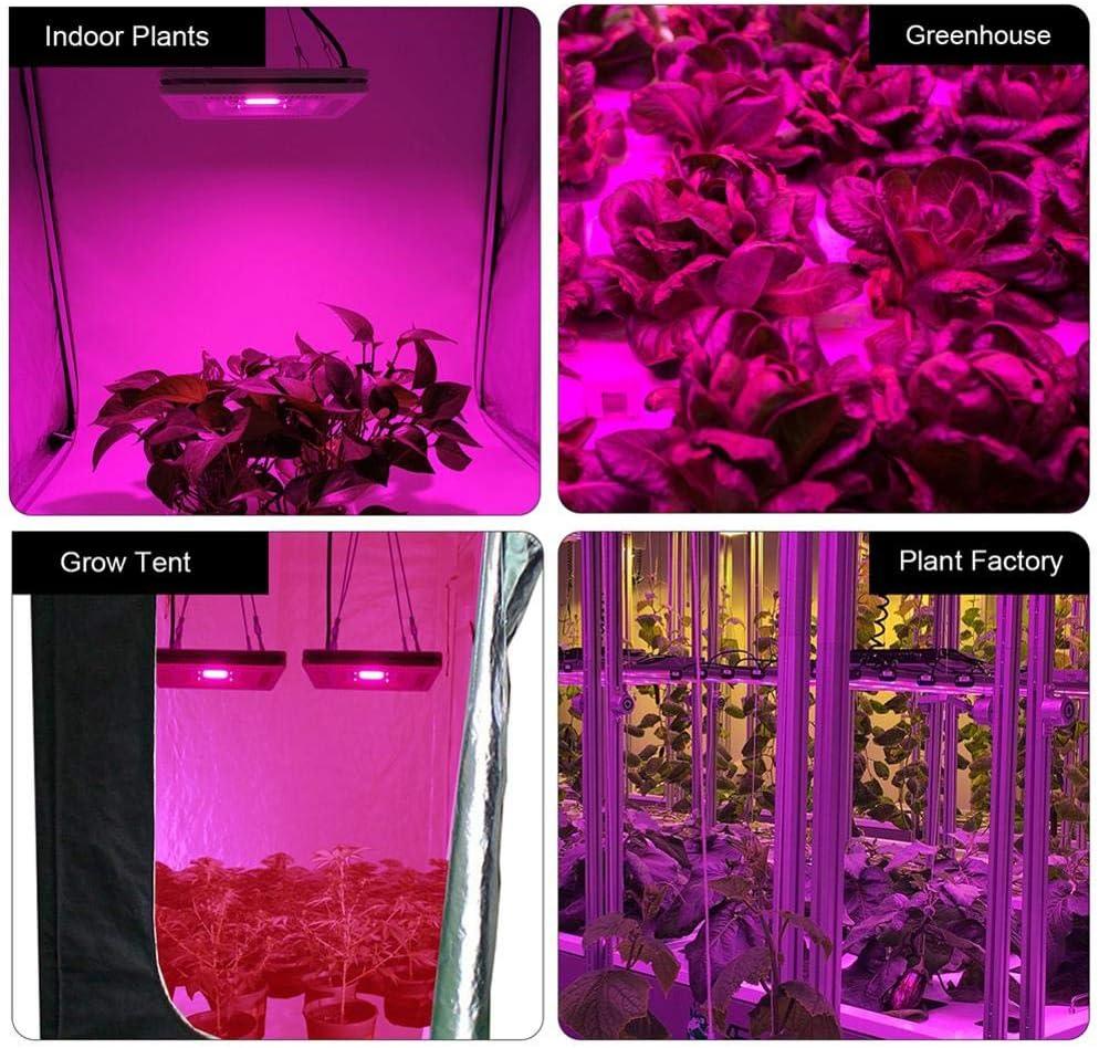 niyin204 Dimmable 500w Lampe pour Plante Culture Spectre Complet LED Grow Light COB Lampe De Croissance pour Indoor Grow Box//Hydroponique Plante Semis Worth Buying