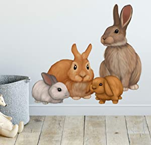 Bunny Rabbit Family Wall Decals Forest Kids Wall Decals -Baby Nursery Toddler Room Wall Decor Boys & Girls Wall Stickers, Bedroom Decoration DIY Decor