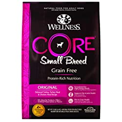 Wellness Core Dry Dog Food