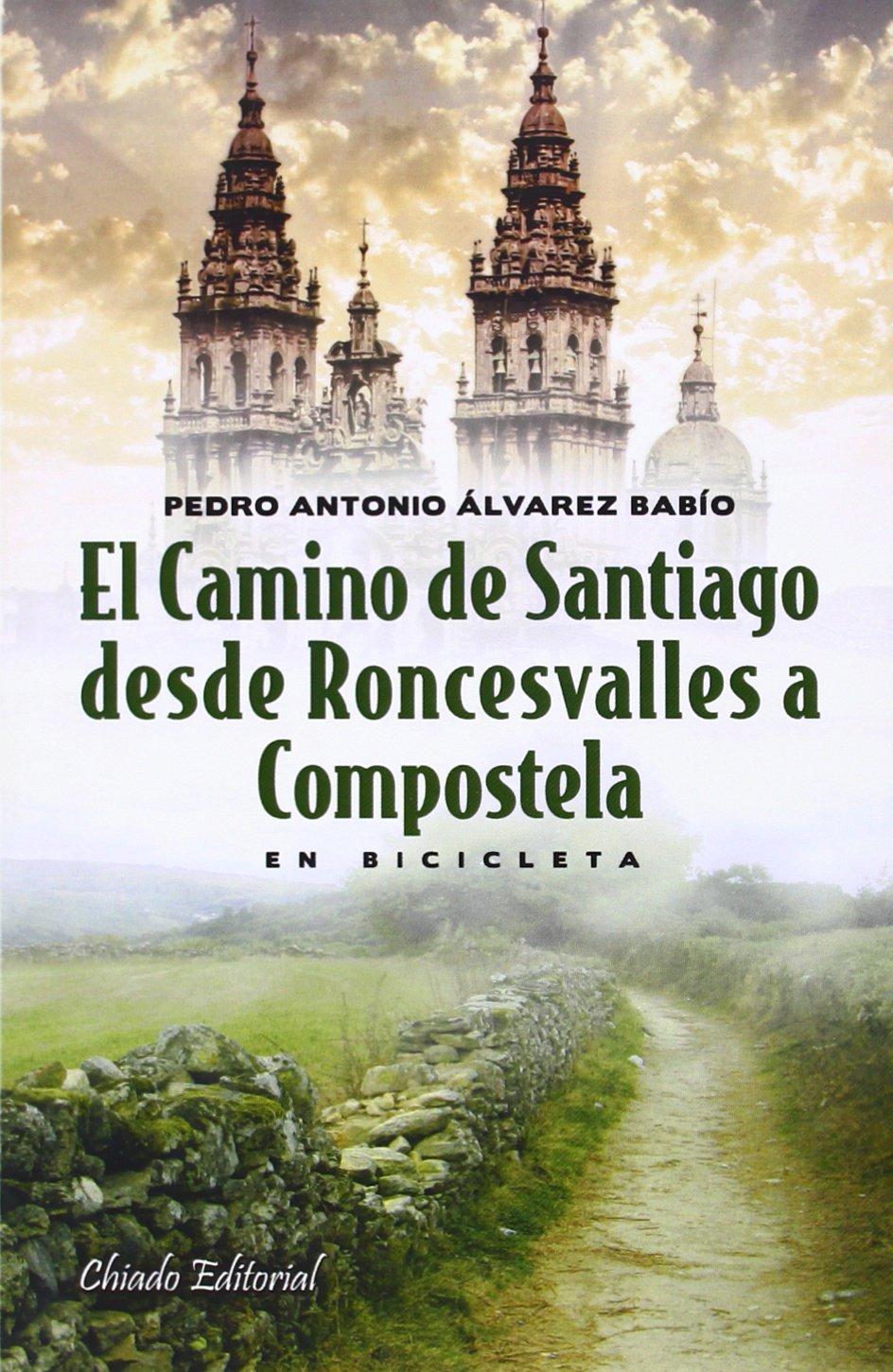 El Camino de Santiago desde Roncesvalles a Compostela Mundo Académico: Amazon.es: Álvarez Babío, Pedro Antonio: Libros