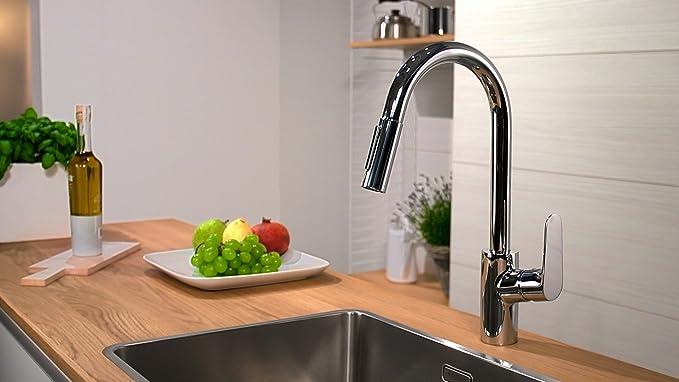 Hansgrohe 31815000 Focus grifo de cocina con ducha extraíble ...