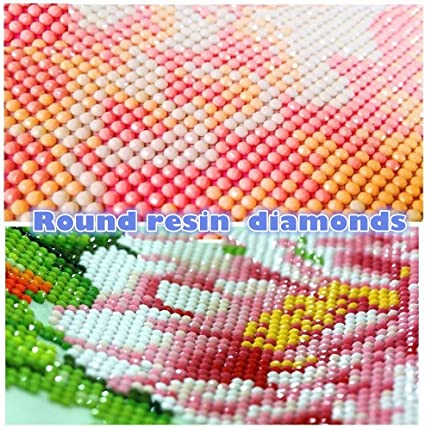 feilin DIY Diamond Rhinestone Painting Kits for Adults and Beginner Embroidery Arts Craft Home Decor Squirrel A 30x40cm 5D Diamond Painting Full Drill
