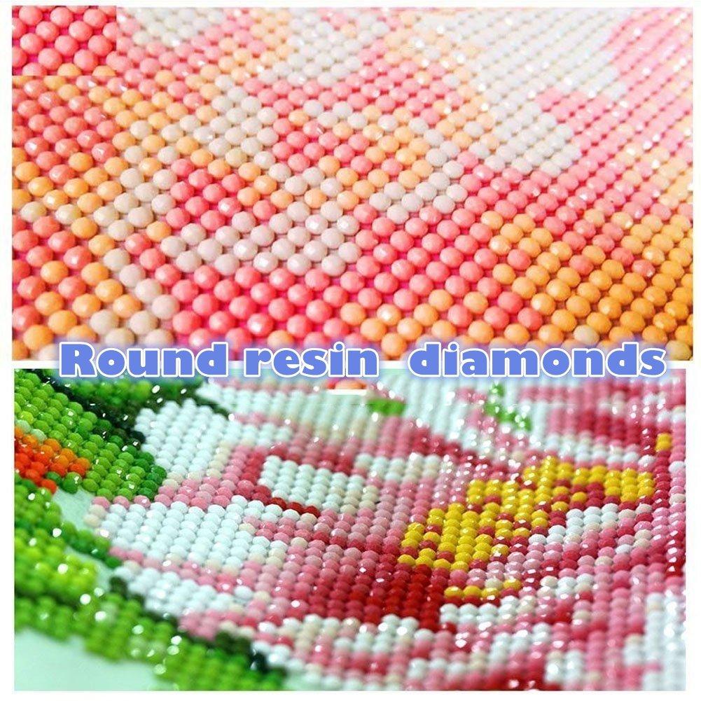 30X40cm 5d Diamond Pintura de Diamante Taladro Completo Diamante Pintar por n/úmero Kits DIY Painting para Adultos Artes del bordado de punto de cruz