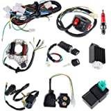 Complete Electrics Stator Coil CDI Wiring Harness Solenoid Relay Spark Plug for 4 Stroke ATV 50cc 70cc 110cc 125cc Pit…