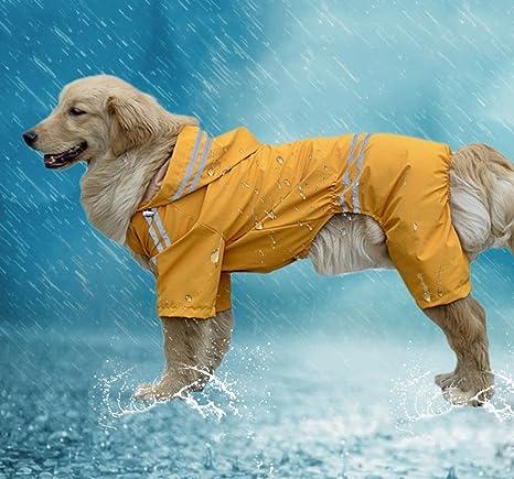 Impermeable perro chubasquero de 4 patas para perro con ...