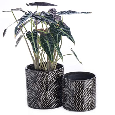 "KYY Ceramic Planters Garden Flower Pots 5.7"" and 4.7"" Set of 2 Indoor Outdoor Modern Plant Containers with Drainage Hole for Succulents (Black Brown) : Garden & Outdoor"