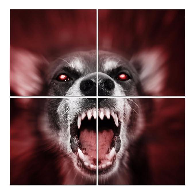 Dekoglas Glasbild Tollwütiger Hund Acrylglas Bild Küche Wandbild