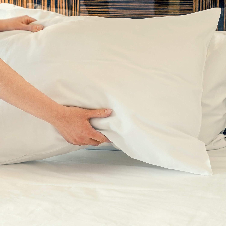 DTY Bedding Premium Queen Bamboo Pillowcases Luxuriously Soft and Comfortable 2-Piece Pillowcase Set from 100/% Bamboo Viscose Queen Pillowcases Sky