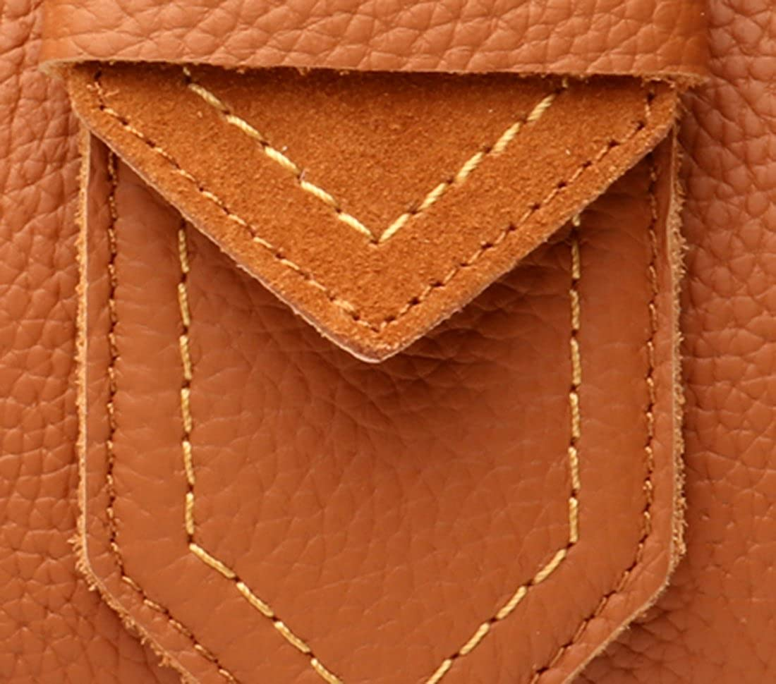 Heshe Vintage Leather Shoulder Bags Small Handbags and Purses Cross Body Bag Satchel for Womens and Ladies