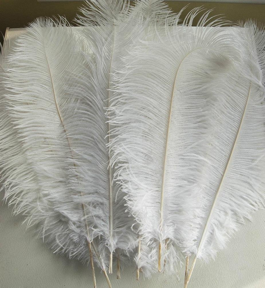 AWAYTR Natural 20-22 inch(50-55cm) Ostrich Feathers Plume for Wedding Centerpieces Home Decoration White 50 Pcs by AWAYTR