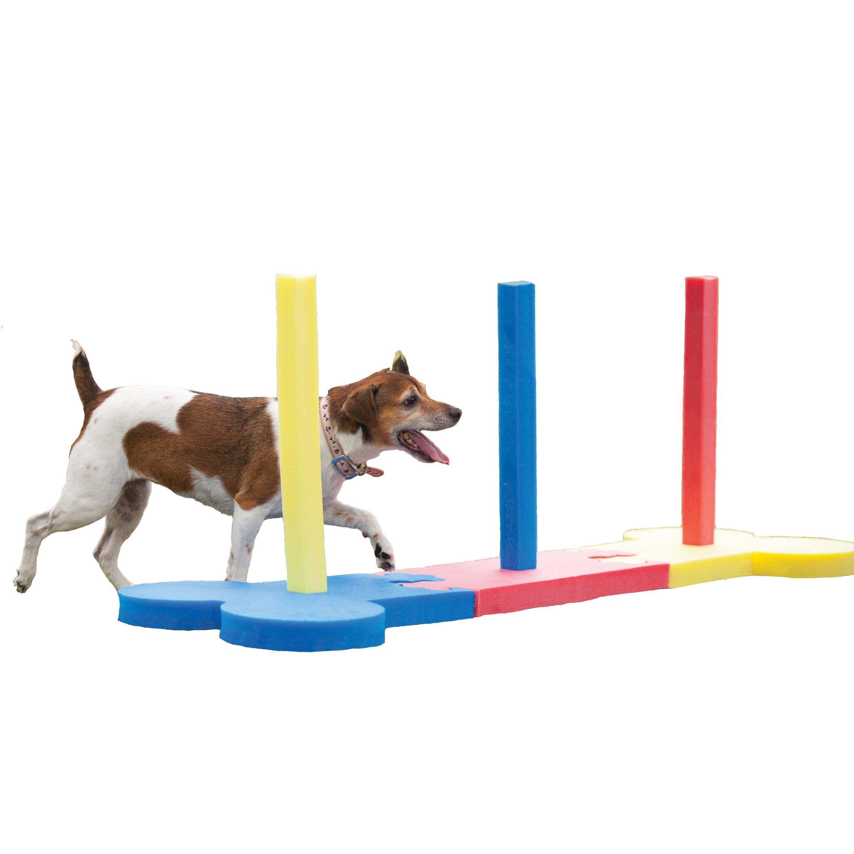 Agility Slalom - Dog play & exercise toy by Rosewood Pet