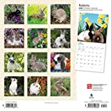 Rabbits 2020 12 x 12 Inch Monthly Square Wall