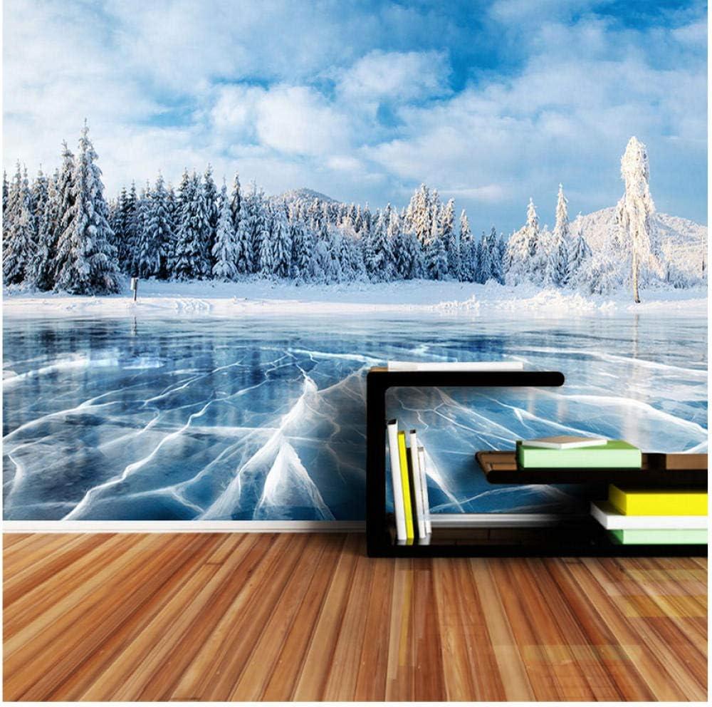 Xbwy Papel Tapiz 3D Personalizado Invierno Frozen Lake Ice And Cracks Hills Pines Blue Sky Wallpapers Para 3 D Living Room Wall Paper-400X280Cm: Amazon.es: Bricolaje y herramientas