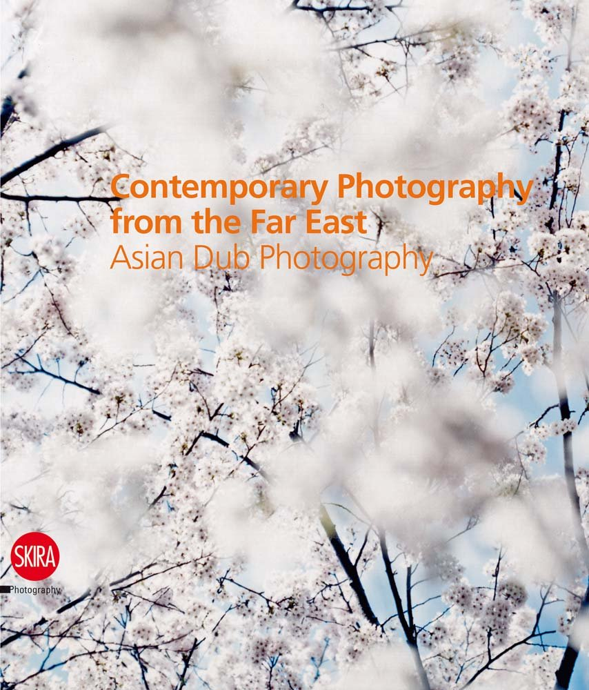 Contemporary Photography from the Far East: Asian Dub Photography PDF