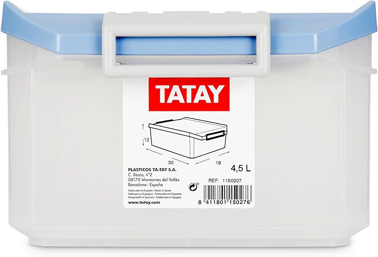 TATAY 1150207 - Caja de Almacenamiento Multiusos con Tapa, 4.5l de ...