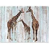 """Visual Art Decor Creative Canvas Prints Wall Decor Dual View Picture on Wood Background Canvas Prints Wall Art Decor (16""""x20"""", Giraffe)"""