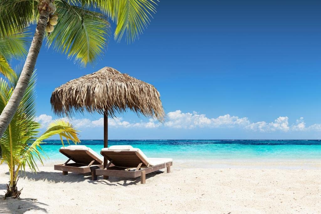 Coral Beach Lounge Chairs Palapa Tropical Palm Tree Photo Cool Wall Decor Art Print Poster 36x24