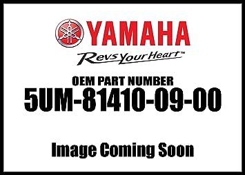 YAMAHA STATOR ASSEMBLY 2003-2004 WR250F 03-04 WR 250F 5UM-81410-09-00