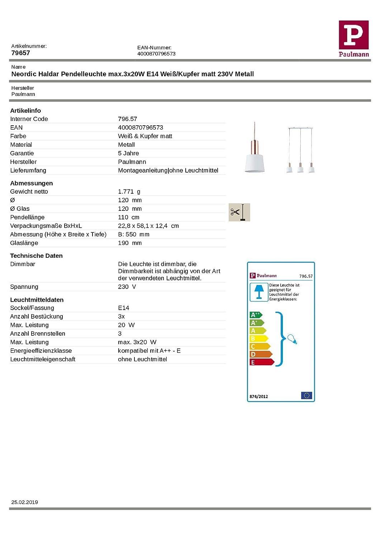 Kupfer Paulmann 79656 Neordic Haldar Pendelleuchte Weiß