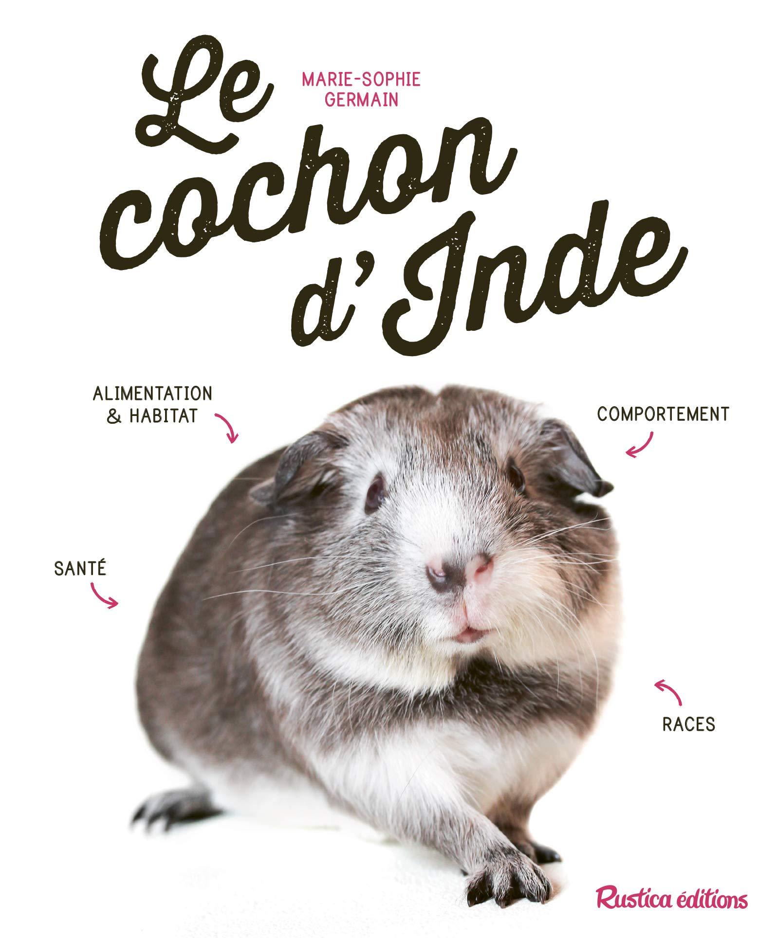 Amazon Fr Le Cochon D Inde Germain Marie Sophie Livres