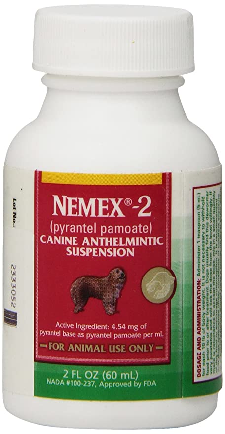 Amazoncom Nemex 2 Wormer 2oz Pet Wormers Pet Supplies
