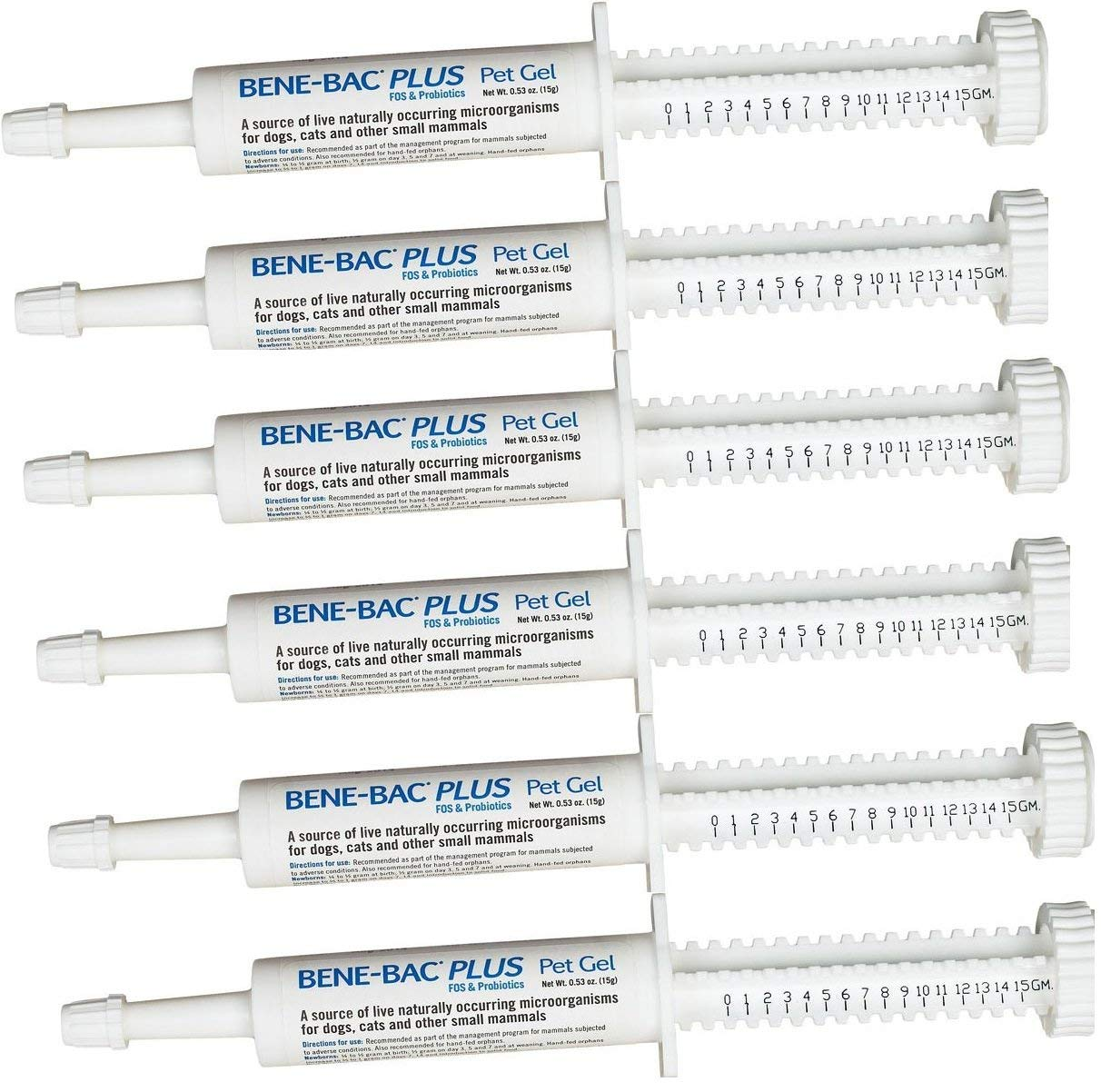 6 Pack Bene-Bac Plus Gel, 15g Syringe 6 -Pack