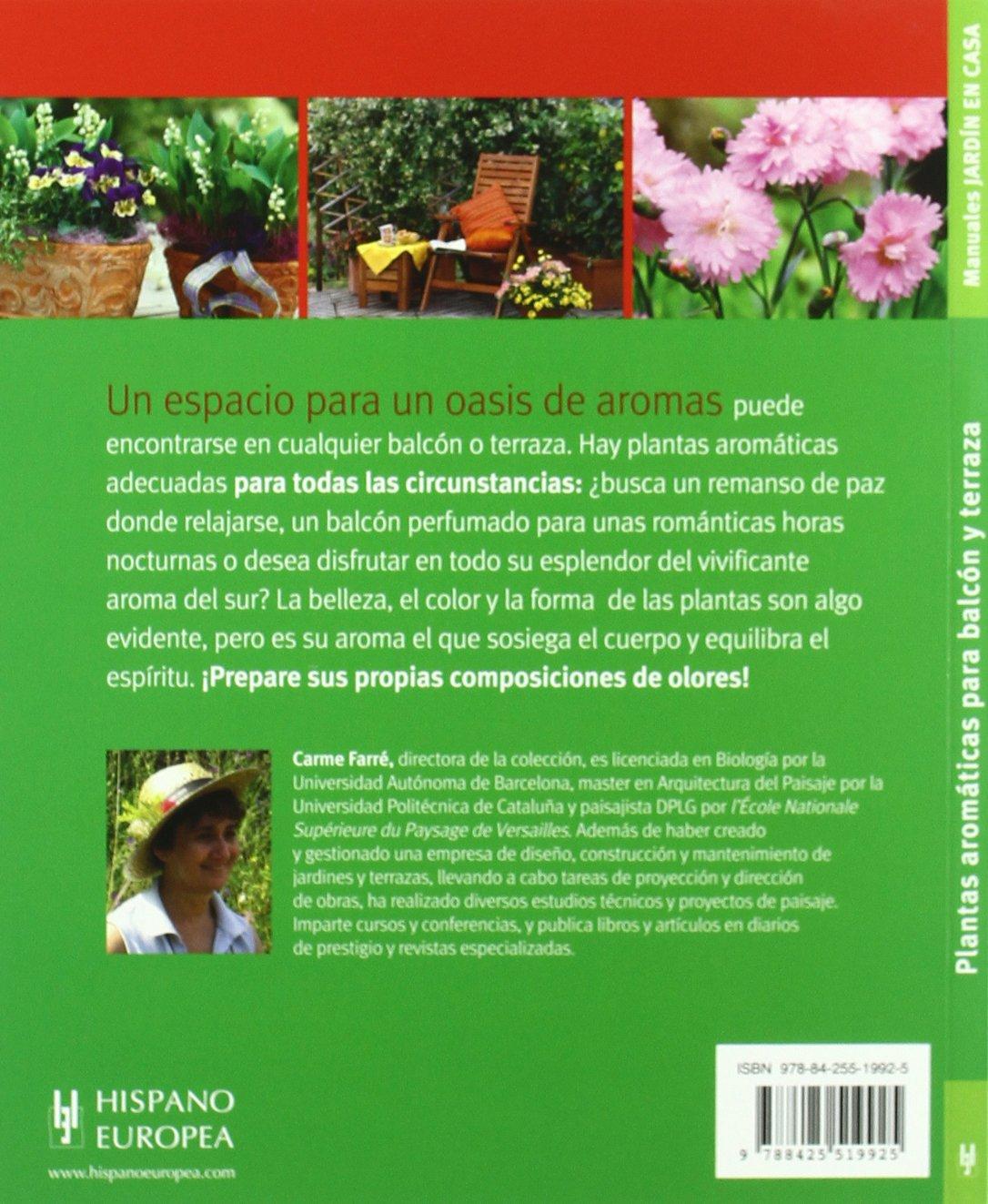 Plantas Aromaticas Para Balcon Y Terraza Aromatic Plants