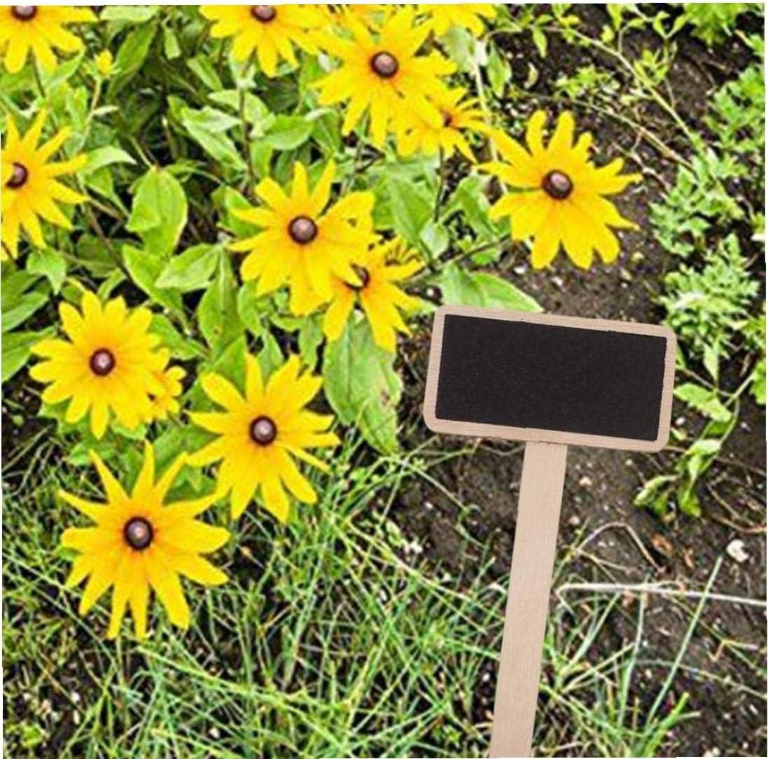 Aisoway Holz Pflanze T-typ Schlagw/örter 20pcs Kindergarten Etiketten F/ür Garten Blumen Und Pflanzen Topf Schlagw/örter T/öpfe Dekor