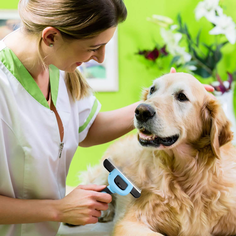 Bonve Pet Peine Perros y Gatos, Cepillo Perros Gatos,Mascotas Peine de Limpieza de Mascotas Reducir 95% Caida de Cabello Púas de Acero Inoxidable Cómodo Seguro Durable