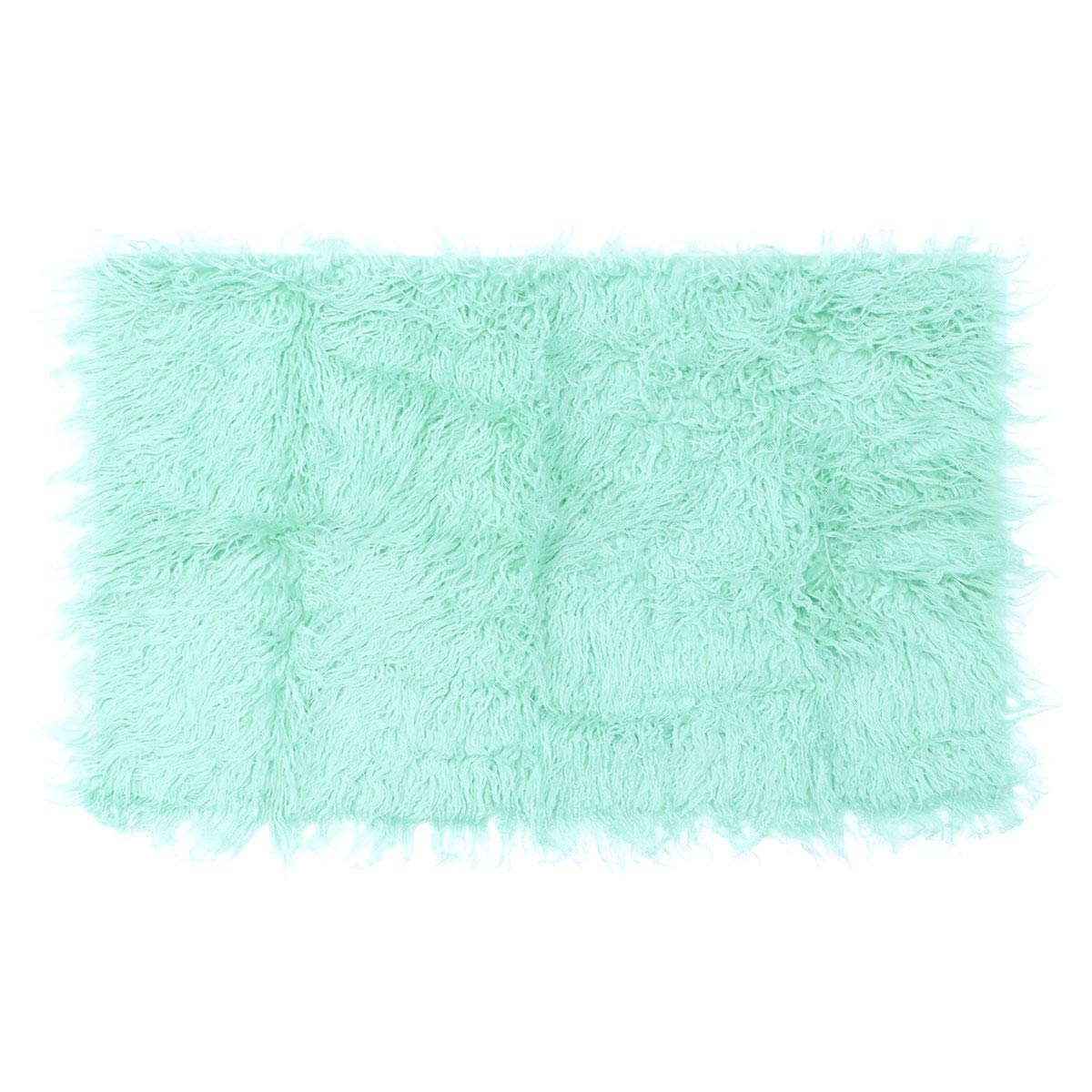 NUOLUX Baby Newborn Fur Photography Photo Props Blanket Rug Beanbag Background Backdrops (Pale Green)
