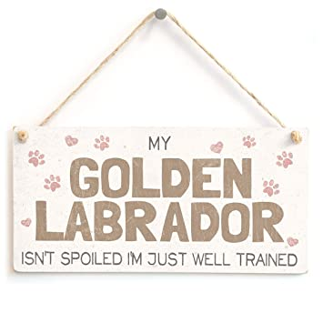 Cute Home Accessory Gift Sign for Labrador Retriever Dog Owners 10x5 Meijiafei My Labrador Retriever Isn/'t Spoiled I/'m Just Well Trained