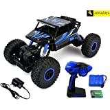 Zest 4 Toyz Rock Through Crawler 1:18 Scale 4Wd Rally Car - The Mean Machine (Assorted )