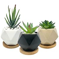 Deals on Bluegrid 3-In Ceramic Mini Flower Succulent Pots w/Bamboo Bases