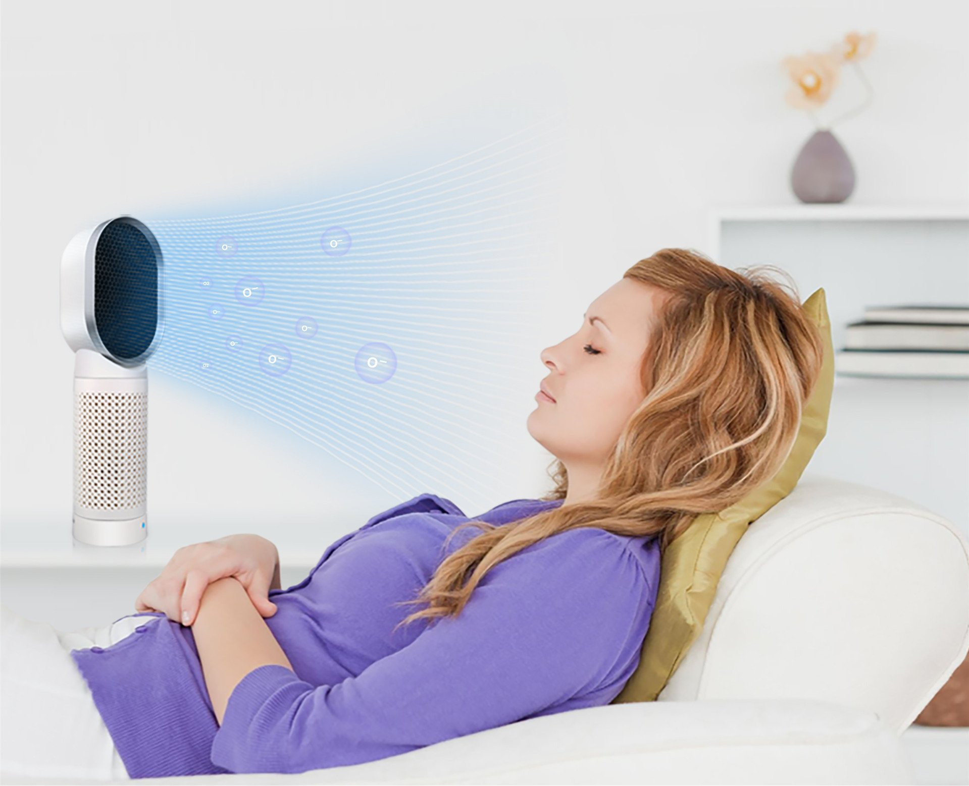 IREALIST Air Purifier 2-Speed Air Cleaner with Carbon Filter Quiet Odor Allergies Eliminator Ideal for Small Room, Allergies, Pet Odor, Smoker
