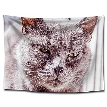 MAFYU Tapices de calidad Manta de sesión de poliester tapiz gato impresión colgar toalla playa casa