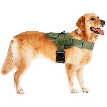Aiduy Arnés para Perro tirones para Perros pequeños, medianos y ...